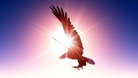 비행: eagle