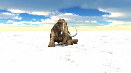 epoch: mammut