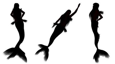 mermaid Stock Photo - 14882393