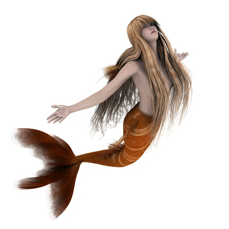 long tail: mermaid  Stock Photo