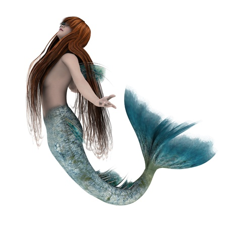 white tail: mermaid  Stock Photo