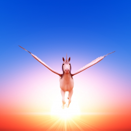 steed: Pegasus
