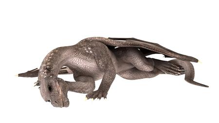 3d dragon: 3D dragon