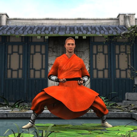 fu: Kung fu master