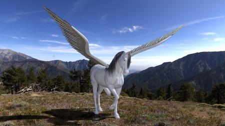 pegasus: Pegasus