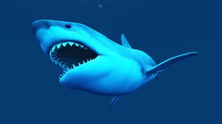 great danger: shark