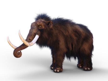 mammoth Фото со стока