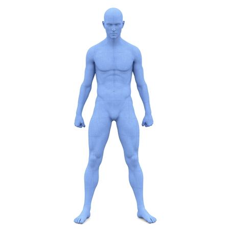männlicher Körper Standard-Bild