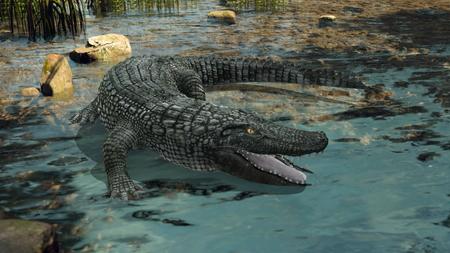 crocodile Reklamní fotografie