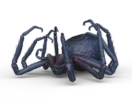 3D CG rendering of spider