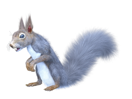 3D CG rendering of squirrel Imagens
