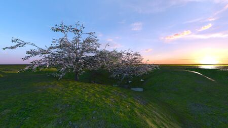 3D CG rendering of grassland Zdjęcie Seryjne