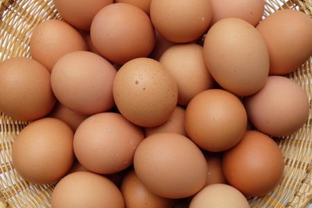 ailment: eggs