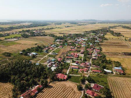 Malays village at Penaga surround by paddy field. 写真素材