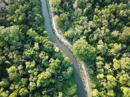 Aerial view river in lush green woodland. Reklamní fotografie