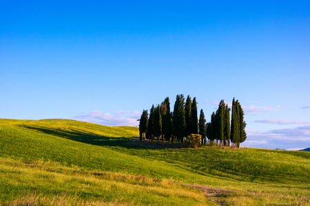 Hermoso paisaje en la Toscana al atardecer en verano, Italia