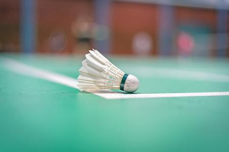shuttlecock: badminton shuttlecock on court.