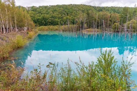 blue pond in Biei, Hokkaido Japan. Standard-Bild - 110095442