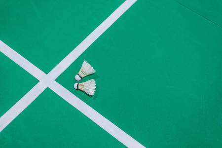 closeup badminton shuttlecock on green court. Standard-Bild - 110095608