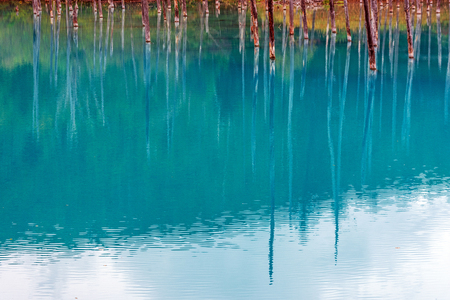 blue pond in Biei, Hokkaido Japan. Standard-Bild - 110095792