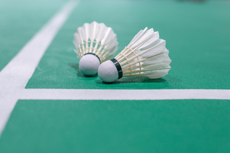 badminton shuttlecock on green court. Standard-Bild - 110095806
