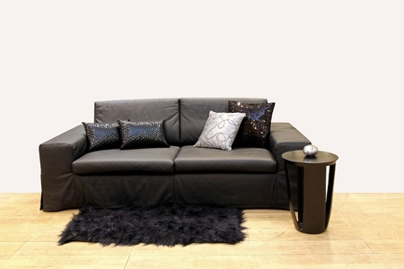 Modern leather sofa in empty interior with decorativr pillows and wooden coffee table Stock Photo - 12723490