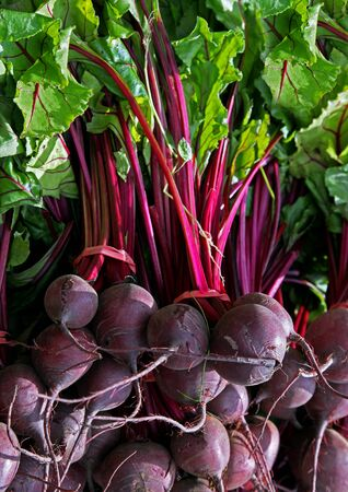 Bunch of fresh organic beetroot arranged for sale on farmers market photo