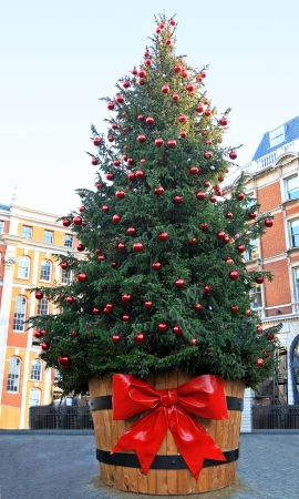 Large Christmas tree outside on public city square photo