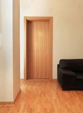 Modern empty apartment interior with wooden door and leather sofa Stok Fotoğraf