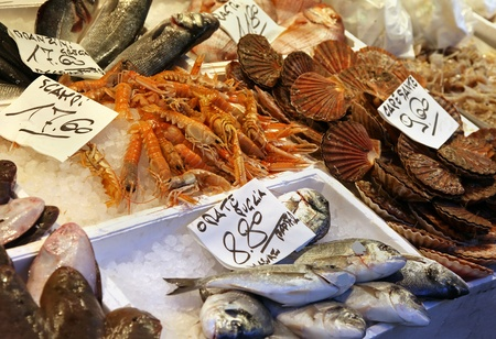 Fresh fish and shells on market stall photo