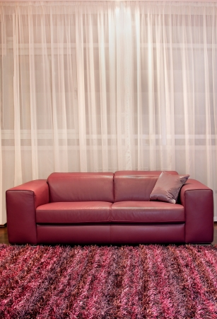 Modern Interior With Leather Burgundy Sofa And Carpet Stock Photo   24894667