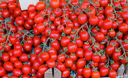 sold small: Piccolo rosso pomodorini mucchio venduti sul mercato Archivio Fotografico
