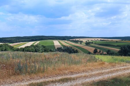 cultivable: Large agriculture field with arable land and grass path Stock Photo