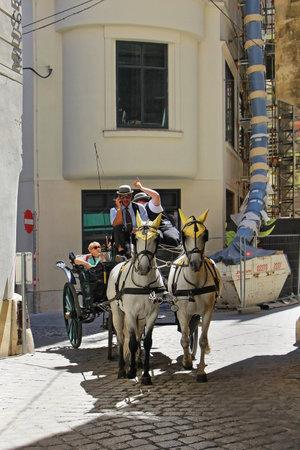 ahogarse: VIENA, Austria - 11 de julio; Caballo ahogar carro es la atracci�n tur�stica tradicional y en tiempo pasado en Viena, Austria - 11 de julio de, 2015: Los turistas disfrutan de coche de caballos con cocheros que est�n conduciendo por ellos, ya que es la forma popular para los turistas para ver CEN ciudad Editorial