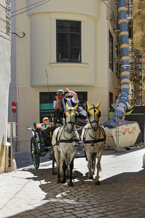 drown: VIENNA, AUSTRIA - JULY 11; Horse drown carriage is traditional tourist attraction and past-time in Vienna, Austria - July 11, 2015: Tourists enjoy horse carriage with coachmen who are driving them around as this is popular way for tourists to see city cen