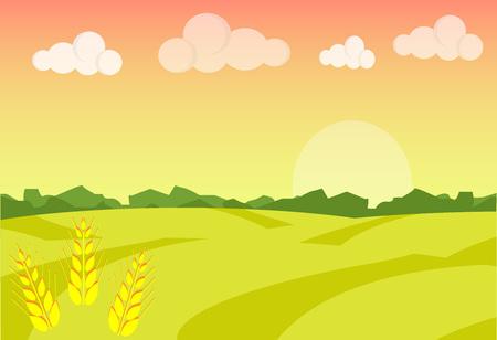 oat field: Wheat field ripe grow, agriculture. Farm landscape. Farm landscape illustration. Field wheat background. Farm sunrise background. Vector illustration Illustration