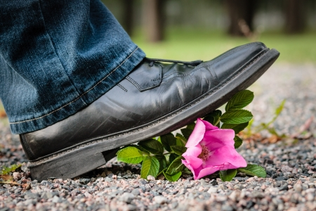 Man crushes a rose by stepping on it