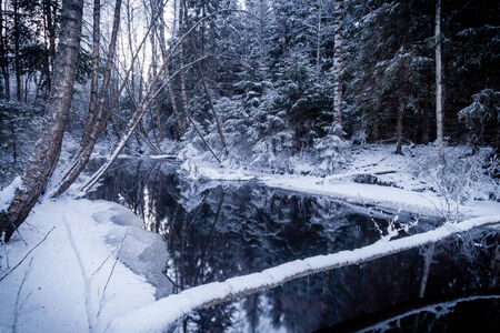 Reflections with fallen tree on Wintry River in Finland photo