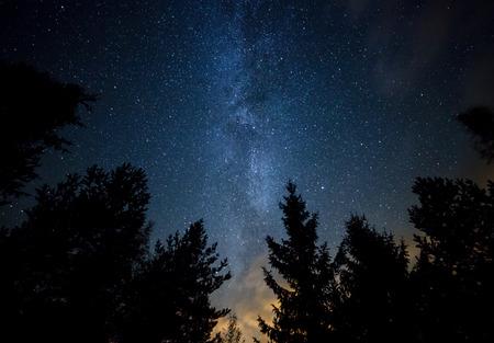 noche estrellada: Cielo nocturno con la Vía Láctea sobre el bosque y los árboles. La última luz del sol poniente en la parte inferior de la imagen.