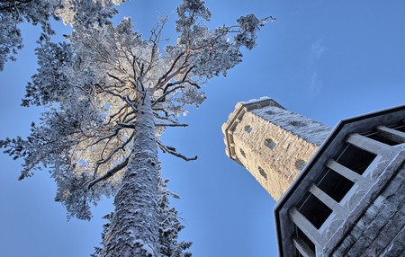 tilted view: Tilted view of the Aulanko lookout tower and snowy tree in winter. Very cold weather. HDR image.