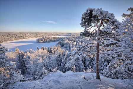snowy landscape: Snowy landscape at Aulanko nature park in Finland. Icy lake and forest view from the viewpoint . HDR image.