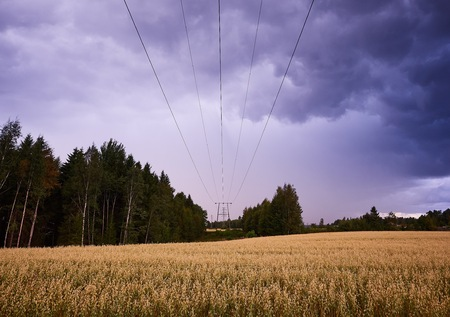 Power lines in stormy countryside landscape. Wires above a field leading to the vanishing point. Stock Photo