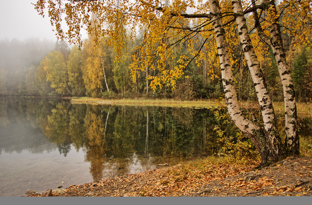 Peaceful foggy autumn lake viev with vibrant fall colors in Finland.