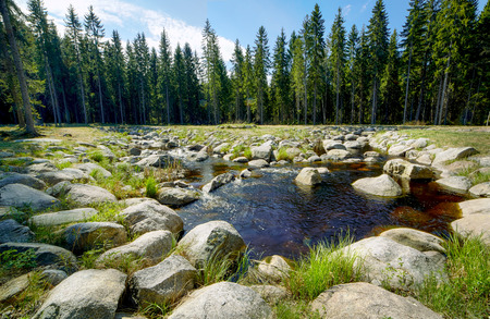 Flowing water and a small pond in sunny summer scenery in Finland.