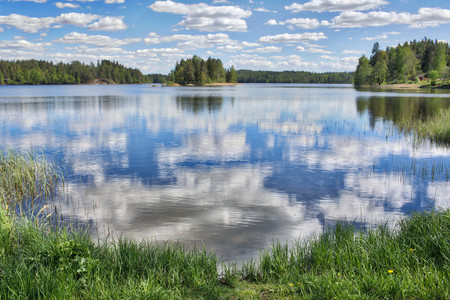 Sunny summer day and green grass by a lake in Finland.
