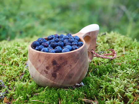 Fresh blueberries in wooden cup on the ground in forest. Healthy food from nature with lots of vitamins.