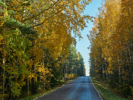Autumn colors and small road in Finland.