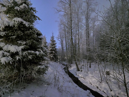 Frozen creek in peaceful winter night  scene under beautiful blue sky. Snow cowered trees in very cold weather in Finland. Stock Photo