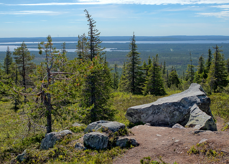 Summer landscape with spruce trees in the wilderness of Riisitunturi national park, a mountain in Lapland in Finland. Big stones on the foreground and a distant lake on the background. Stock Photo