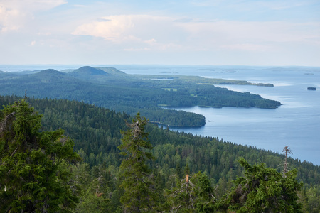 Scenic summer landscape view over the lake Pielinen from the top of the UkkoKoli, a fell at the Koli national park in Joensuu, Finland, the land of a thousand lakes. Reklamní fotografie